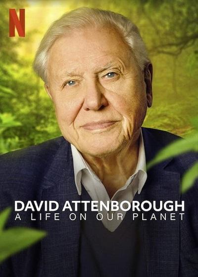 ดูหนังออนไลน์ฟรี David Attenborough: A Life on Our Planet (2020) เดวิด แอทเทนเบอเรอห์ ชีวิตบนโลกนี้